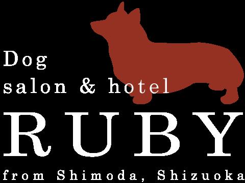 RUBY's BLOG